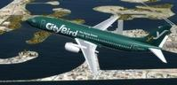 Boeing 737 400 Multi Livery Native FSX P3D 10