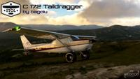 Cessna 172 Tail dragger MSFS 2020 10