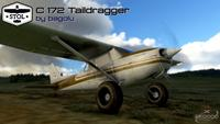 Cessna 172 Tail dragger MSFS 2020 29