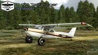 Cessna 172 Tail dragger MSFS 2020 3