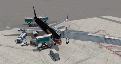 Boeing 757 200 Donald Trump FSX P3D  19