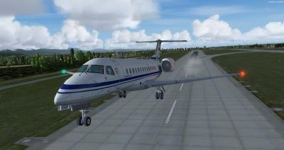 Embraer ERJ 135 Eseese livery FSX P3D  26