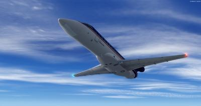 Embraer ERJ 135 daudzkrāsains FSX P3D  32