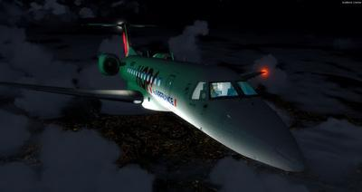 Embraer ERJ 135 Eseese livery FSX P3D  40