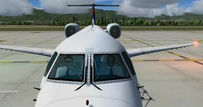 Embraer ERJ 135 Eseese livery FSX P3D  5