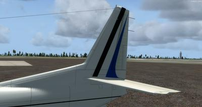 Piaggio P 166 Collection FSX P3D 12