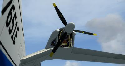 Piaggio P 166 Collection FSX P3D 13