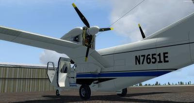 Piaggio P 166 Collection FSX P3D 5