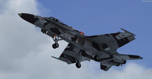 Boeing_FA-18c_Hornet_Multi-livery_FSX_P3D_22
