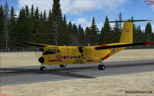 De Havilland DHC5 Buffalo Forces Canadians FSX