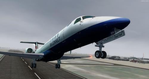 Embraer_ERJ_145_멀티 리버리_FSX_P3D_33