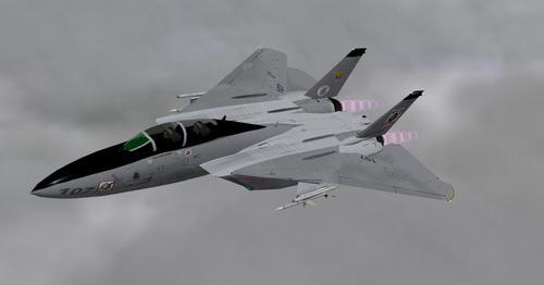 F14D_Tomcat_X-Plane_10_33