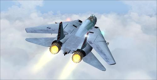 Grumman_F-14B_Tomcat_FS2004_22