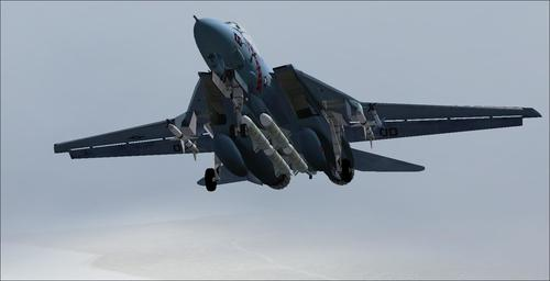 Grumman_F-14B_Tomcat_FS2004_33