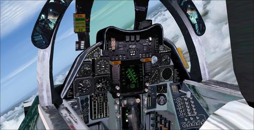 Grumman_F-14B_Tomcat_FS2004_44