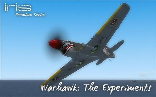 IRIS P-40_Warhawk_The_Experiments_FSX_33