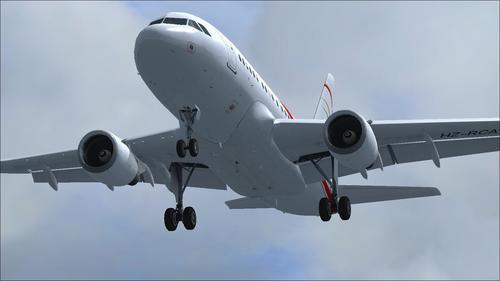 PA_Airbus_A318-112_CJ_Elite_Saudi_RCA_FSX_33