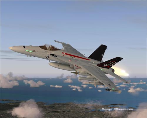 بوينغ F / A 18E سوبر هورنيت FS2004
